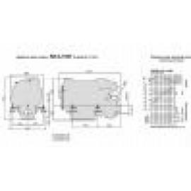 Судовой дизельный двигатель  SCAM DIESEL SD 4.100 T с реверс-редуктором ТМ93